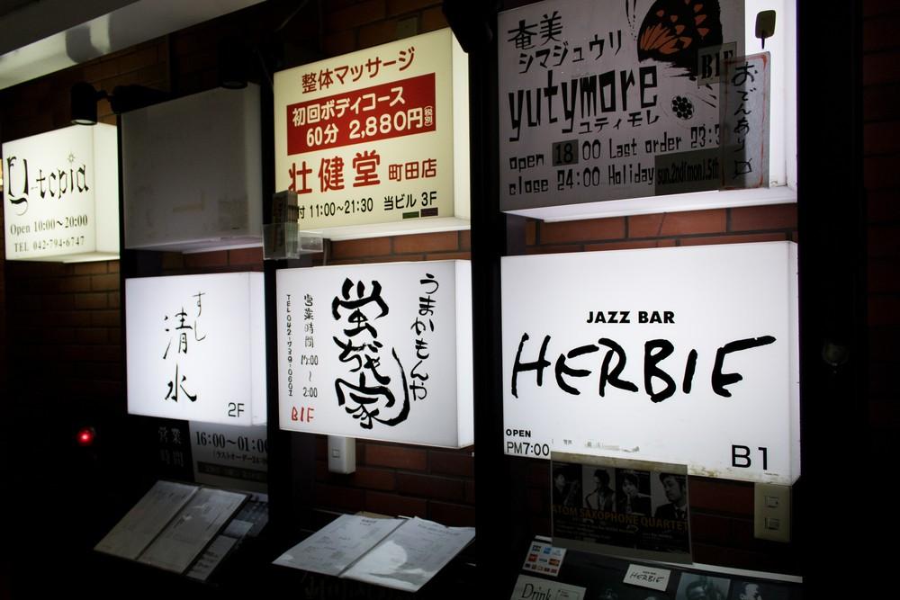 Herbie-6.jpg