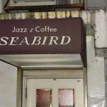 Seabird outside.JPG